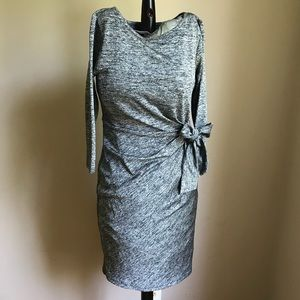 Ann Taylor NWT Sz Small Petite Bow tie dress